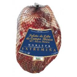 Extremadura Nobility...