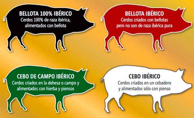 Etiquetado del jamon iberico Ministerio de Agricultura Alimentación y Medio Ambiente